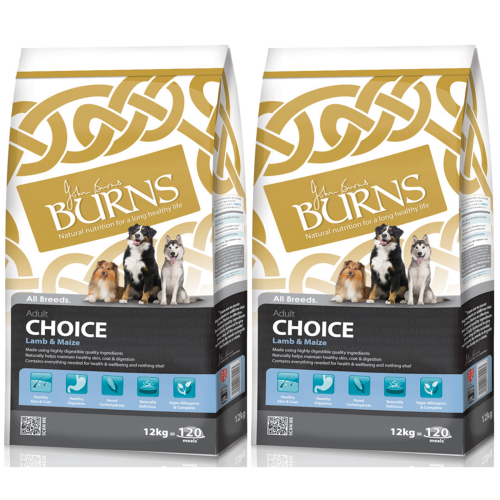 Burns Adult Lamb & Maize 12kg x 2