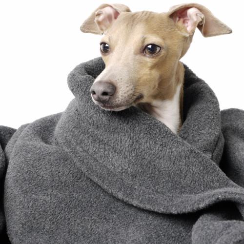 Charley Chau Double Fleece Charcoal Dog Blanket Large