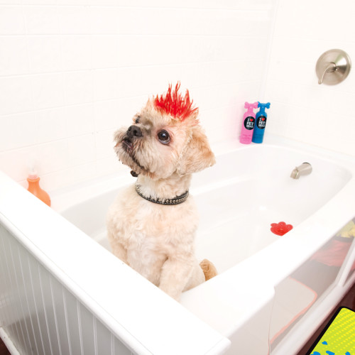 Pet Head Feeling Flaky Dog Shampoo