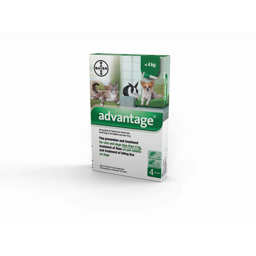 Advantage For Cats Dogs And Rabbits