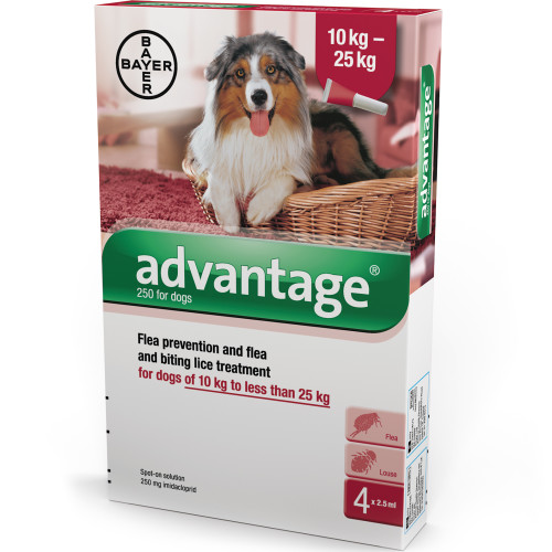 Advantage Flea Control 250 for Large Dogs 10 - 25kg (4 pipettes) NFA-D