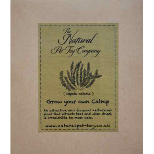 The Natural Pet Toy Company Grow Your Own Cat Catnip