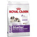Royal Canin Giant Starter Dog Food