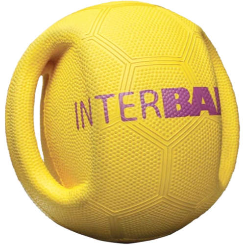 Interball Interactive Dog Ball Toy for throw and fetch Mini