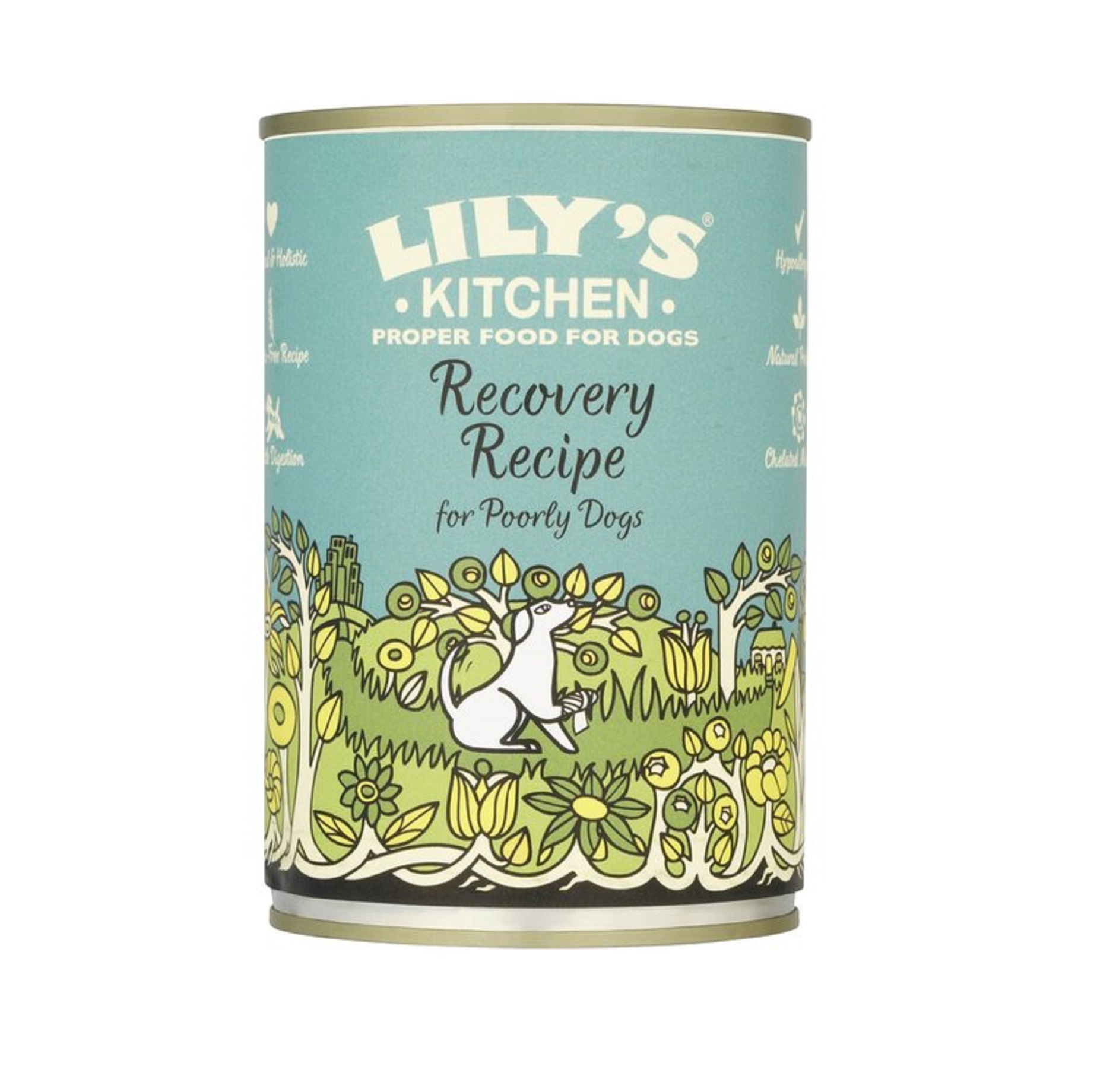 Lily S Kitchen Recovery Recipe Dog Food From 163 14 28