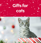 Gifts for cats