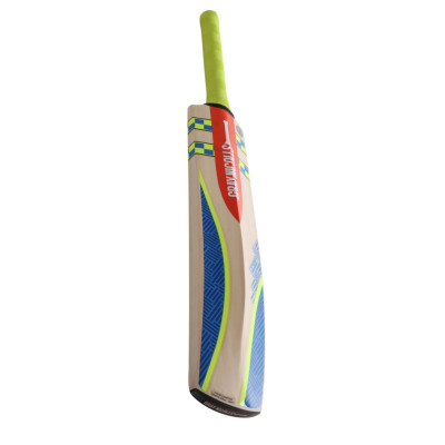 Gray-Nicolls Omega XRD Warrior Kashmir Cricket Bat size H