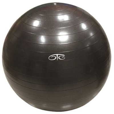 OTG Weighted 65cm Gym Ball