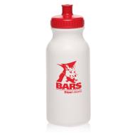 Picture for manufacturer Value 20 oz. Sports Bottle with Push Cap