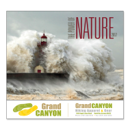 Picture for manufacturer The Power of Nature Wall Calendar