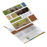 Picture for manufacturer Wildlife Tri-Fold Greeting Card Calendar