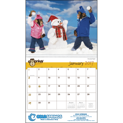Picture of Monkey Business Wall Calendar