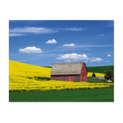 Picture of Trusted Choice® Custom Scenic Wall Calendar