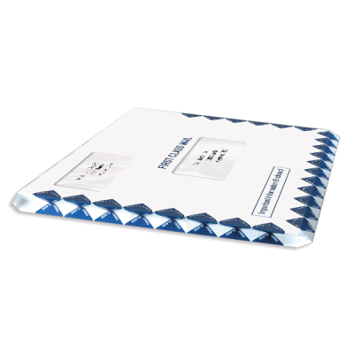 Picture of Expandable 10 x 13 Tax Software Envelope
