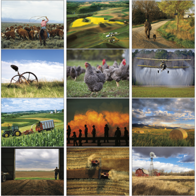 Picture of National Geographic Rural Scenes Wall Calendar