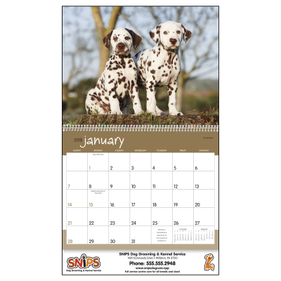 Picture of Puppies Wall Calendar