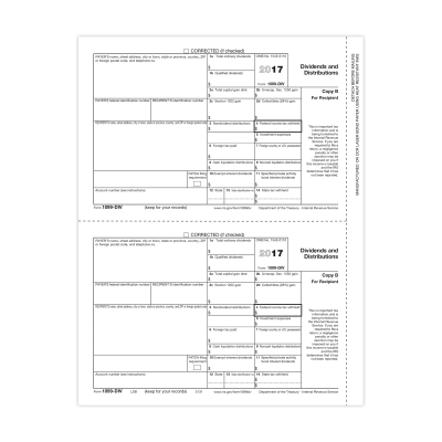 Picture of Form 1099-DIV - Copy B Recipient (5131)