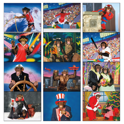 Picture of Monkey Mischief Wall Calendar