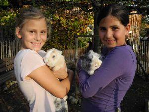 Kinder- und Jugendfarmen