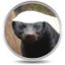 OS XI Honey Badger