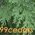 Greening99