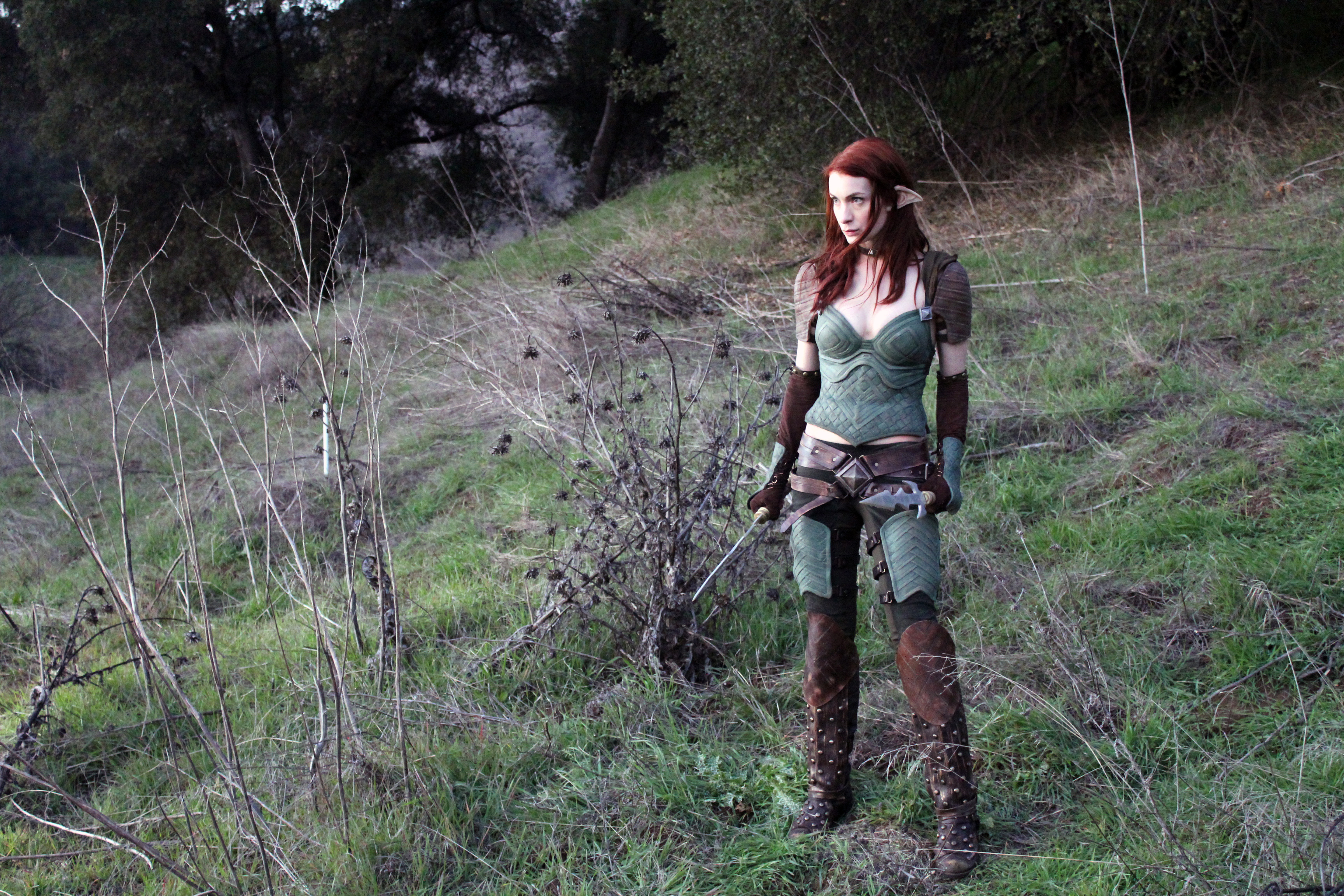 Felicia Day Making Dragon Age Web Series 20110215035927056