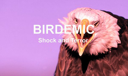 Birdemic: Shock And Terror – An Inspiration?