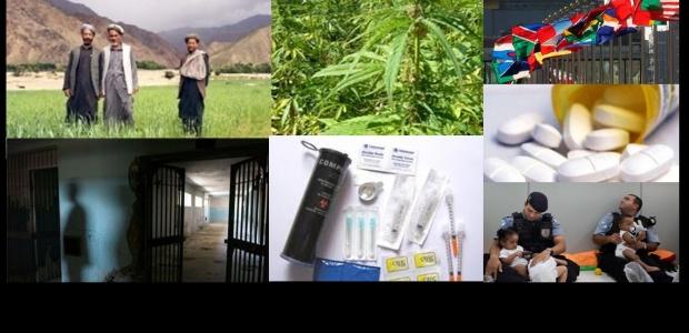 Guia de Política de Drogas do IDPC