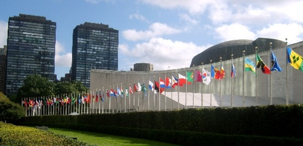 The NYNGOC invites organisations beyond NY to participate in UNGASS 2016