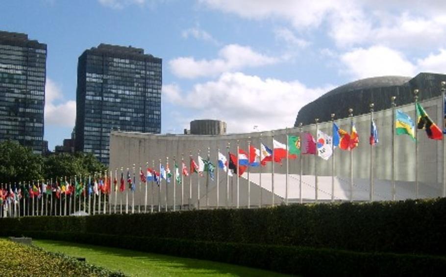 Le NYNGOC invite les ONG à participer à l'UNGASS de 2016
