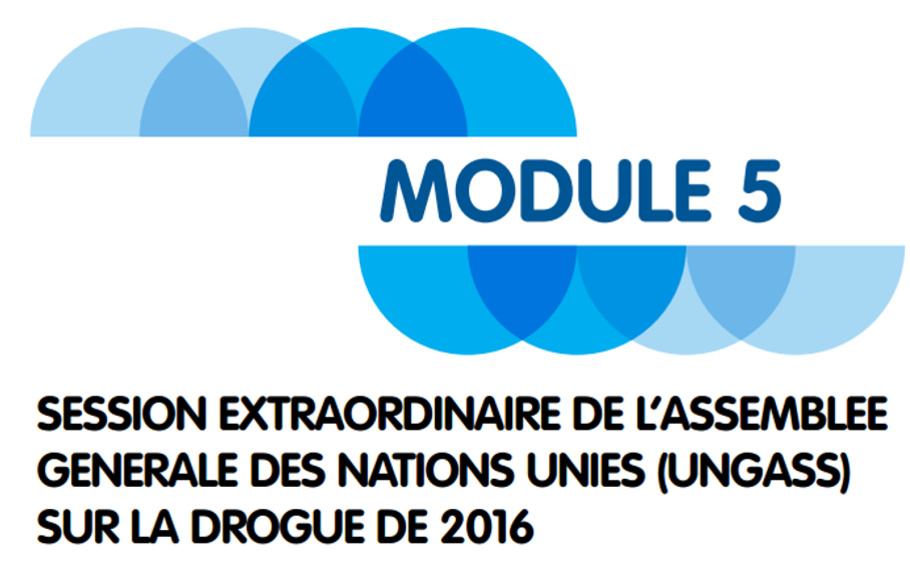 Notre manuel de formation sur les politiques des drogues et l'UNGASS2016 est maintenant disponible en Français