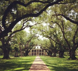 GRDA_03_Oak Alley Plantation
