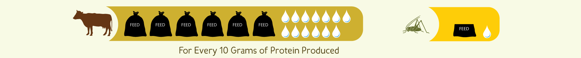 For every 10 grams of protein produced insects utilize substantially less feed and water