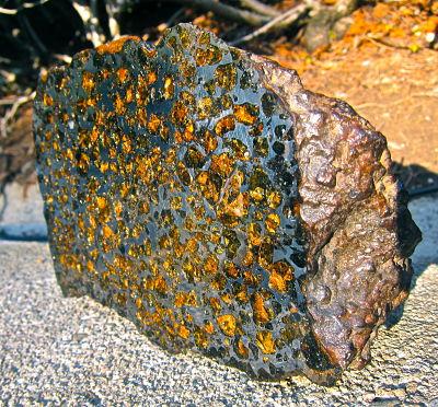 Meteoryt Pallasyt - przekrój poprzeczny