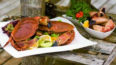Velkommen til krabbefest!