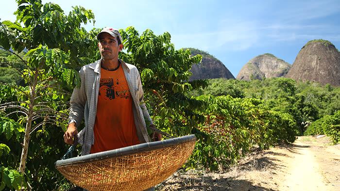 Den brasilianske agronomen Pedro Malta er ansatt i NESCAFÉ. Han hjelper lokale kaffebønder med å dyrke mer bærekraftige avlinger og drive gårdene sine mer effektivt og lønnsomt.