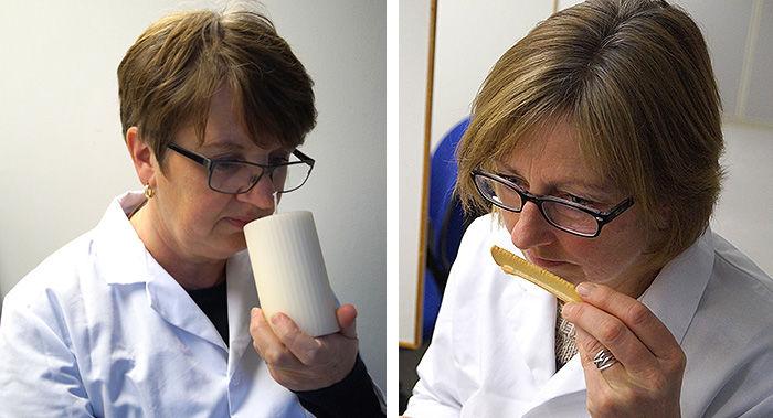 Kristin Enger og Sigrun Bjørge Løken jobber som sensoriske dommere ved Nofima på Ås.