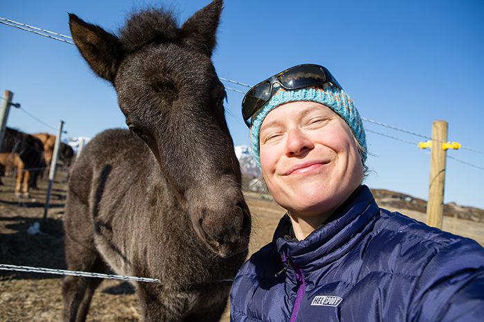 Det er lett å få nye venner på Hov Hestegård på Gimsøya.