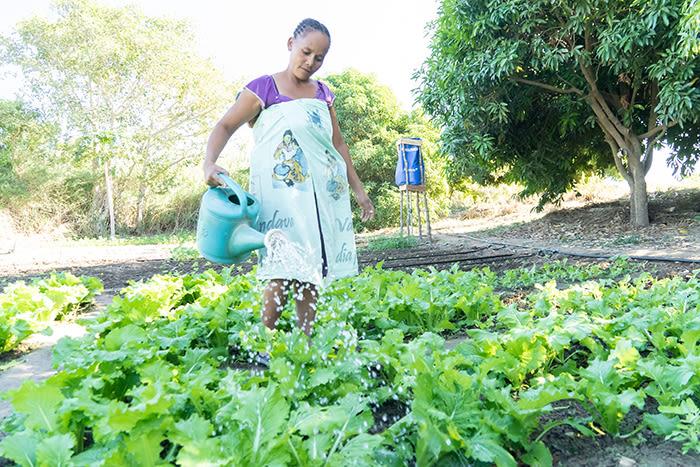 Med rent vann tilgjengelig kan familiene også dyrke grønnsaker som kan selges og gi inntekt til familien.