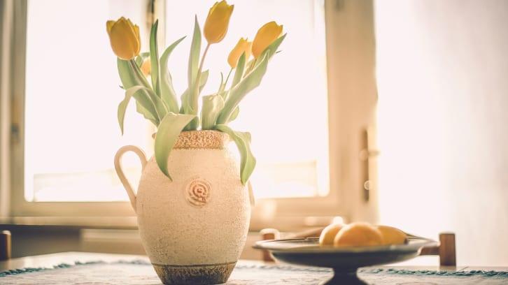 Gule tulipaner