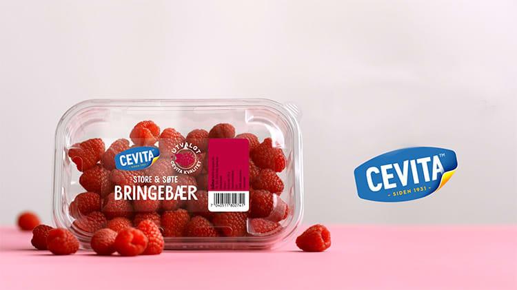 Cevita-bringebærene er fulle av smak, friske og har perfekt form.