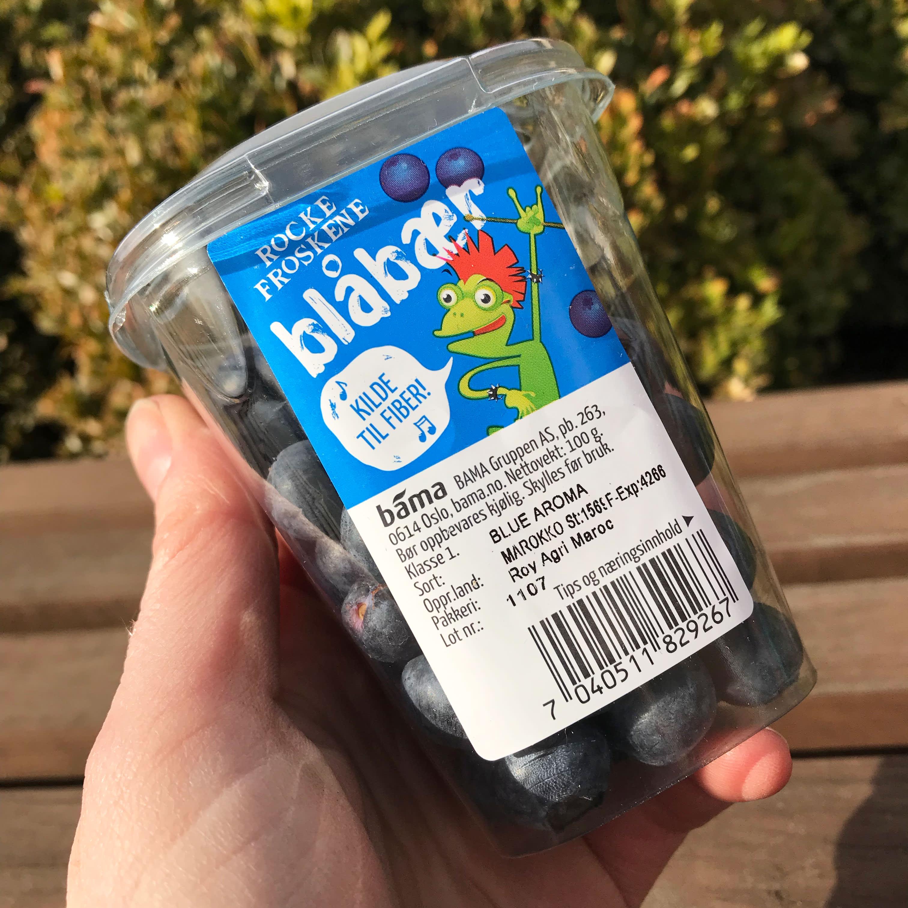 Rockefroskene - blåbær