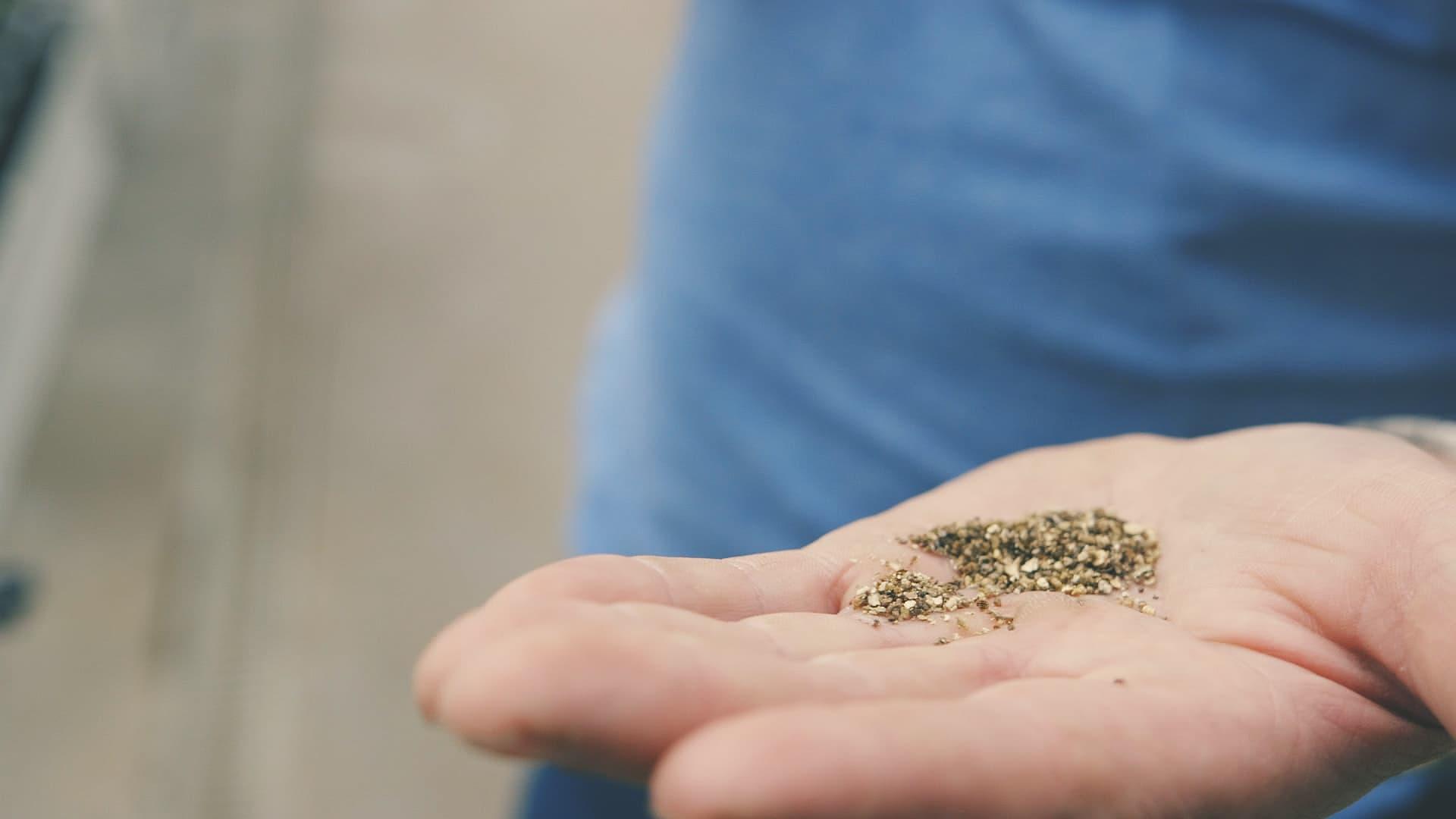På Snarum gartneri klekkes det nyttedyr hver uke, disse har gjort det mulig å avstå fra plantevernmidler.