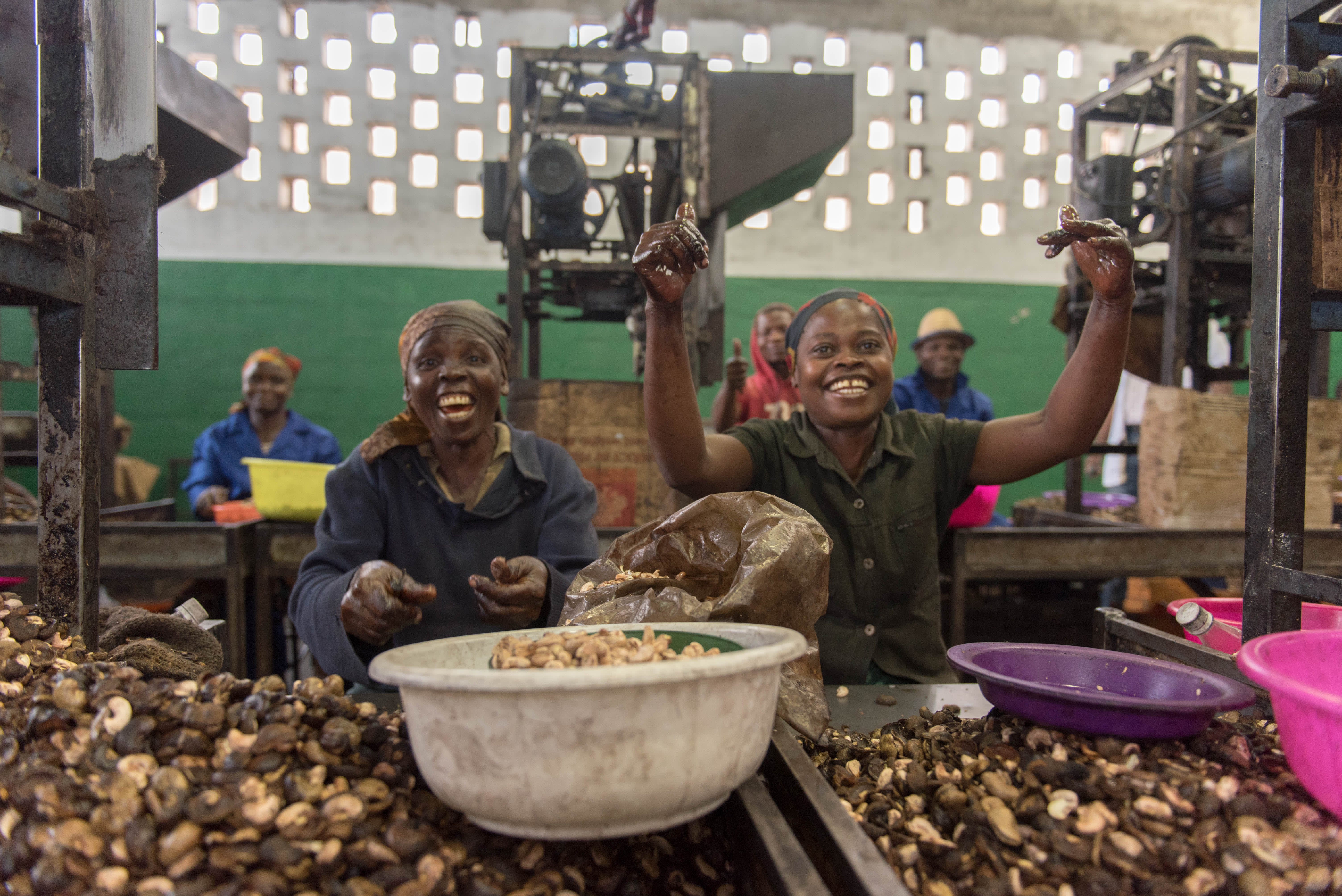 Disse lokale kvinnene jobber med å knekke cashew-nøttene og fjerne skallet.