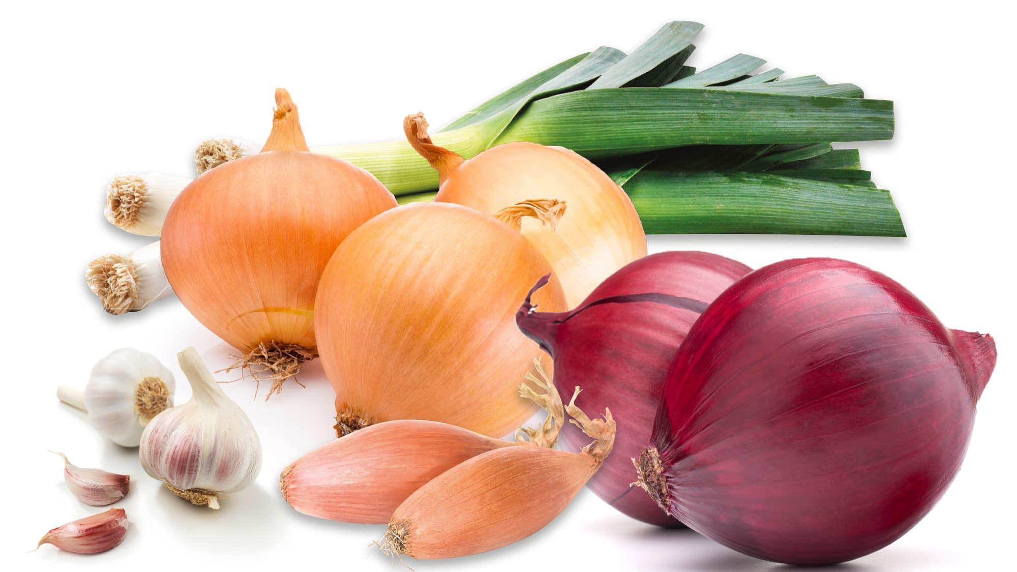 Alle medlemmene i løkfamilien, inkludert purre og hvitløk, fortjener sin supergrønnsak-status.