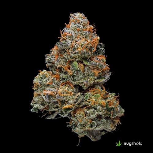 Girl Scout Cookies Cannabis Strain