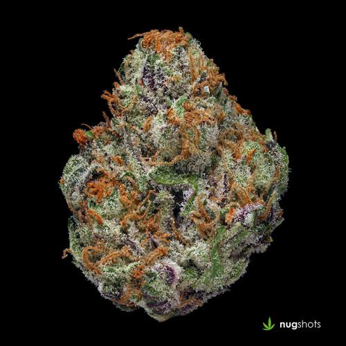 Lucid Dream Cannabis Strain