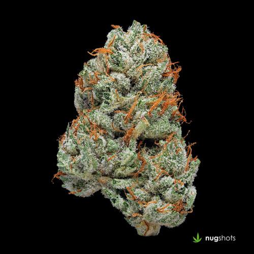 Platinum Bubba Cannabis Strain