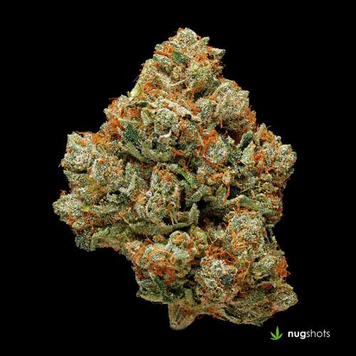 Triangle OG Cannabis Strain