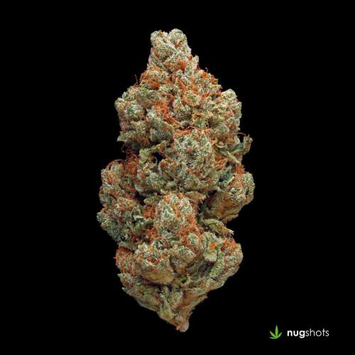 Platinum OG Cannabis Strain